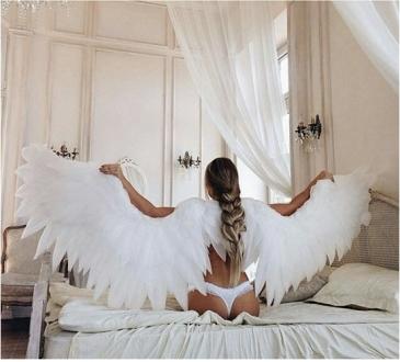 Крылья 003